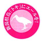 新潟、神奈川で美容室・理容室を運営 みやびグループ